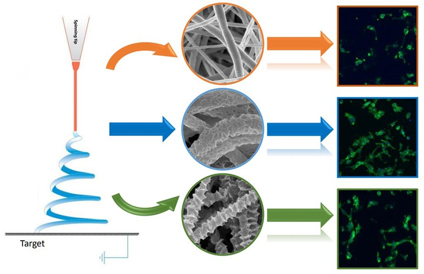 Fabrication of polycaprolactone electrospun fibers with different hierarchical structures mimicking collagen fibrils for tissue engineering scaffolds