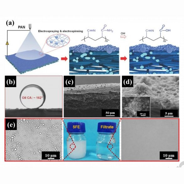 Electrospinning: A versatile strategy for mimicking natural creatures